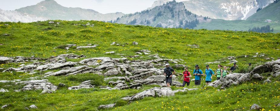 asics trail runners ireland