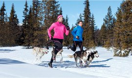 Winter-running-2_normal