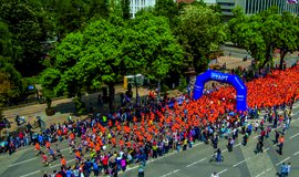 """RUN ASICS KRASNODAR"" - 2016"